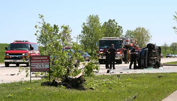 second-tree-hit-by-car