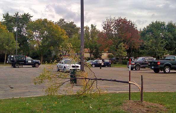20090928-trees-vandals