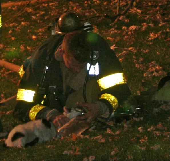 firefighter-cat-O2