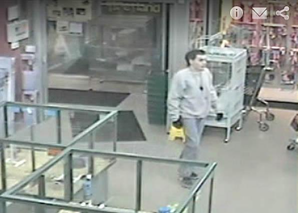 Yorkshire Terrier theft security video Petland