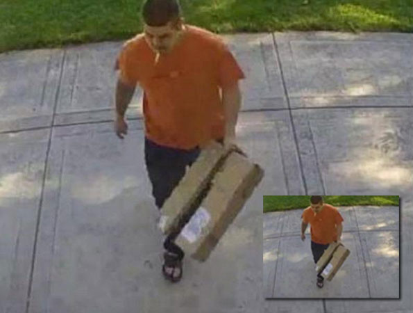 Package Theft Arlington Heights