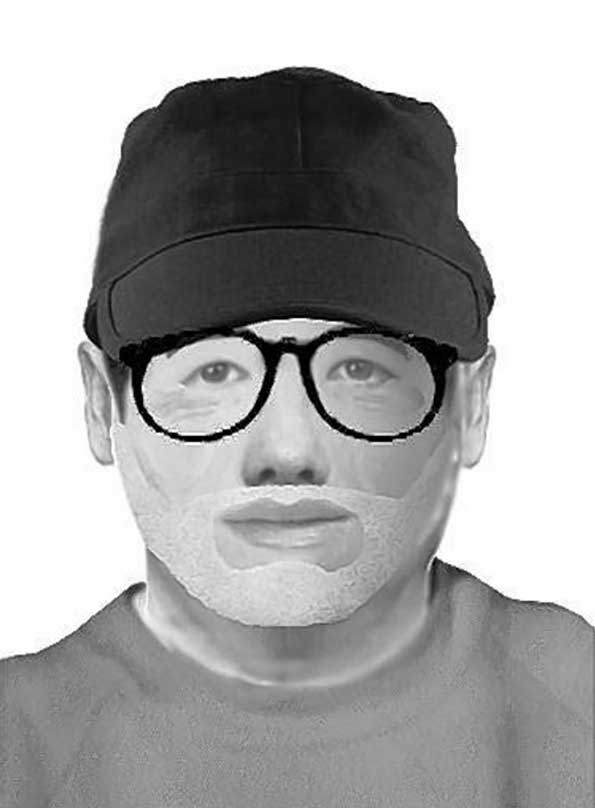 Naperville Burglary Suspect Police Sketch
