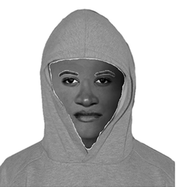 Naperville carjacking police sketch