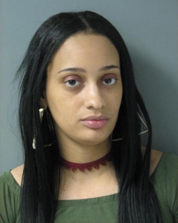 Laquesta C. Rice Schaumburg Prostitution Investigation