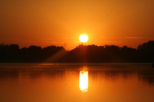 Lake Arlington Sunrise