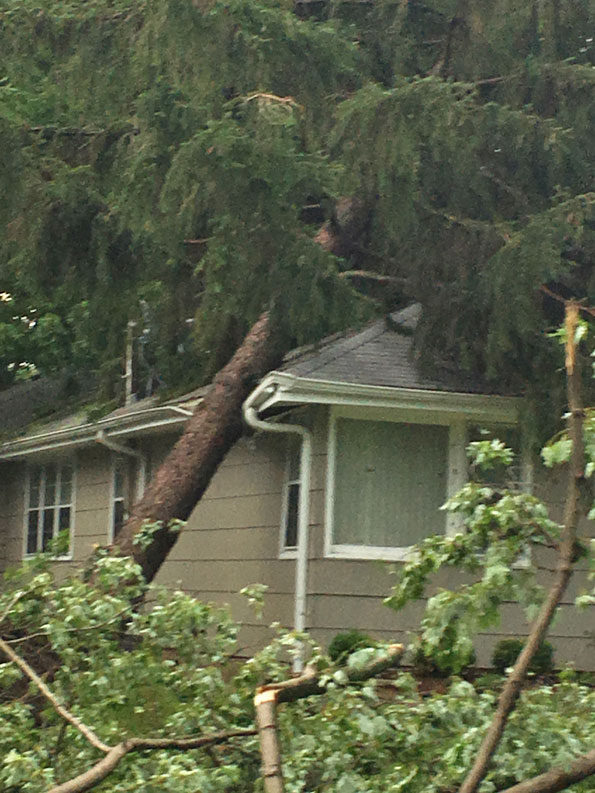Tree on a house Itasca (PHOTO CREDIT: Itasca Fire Department PIO Franco Giovannelli).