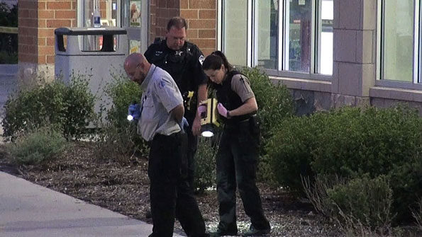 Evidence collection in bushes at Schaumburg Walgreens shooting.