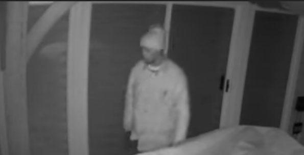 Possible Offender Mount Prospect Burglaries
