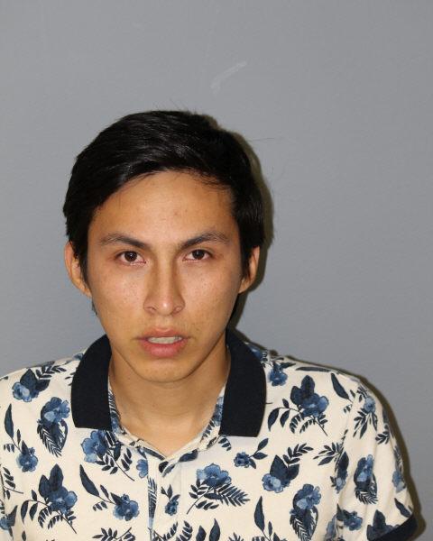 Mike Steven Motta-Saenz, criminal sexual assault suspect Arlington Heights