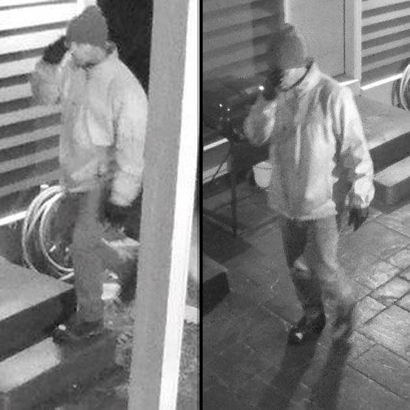 Vernon Hills Burglary Suspect September 2018