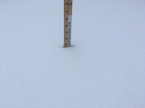 New Snow Cover Depth Arlington Heights Saturday January 19, 2019