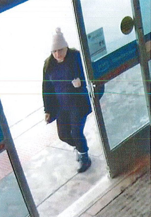 Accomplice in wallet theft case at Whole Foods Schaumburg