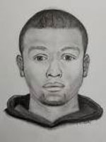 Mount Prospect Police burglary suspect sketch February 2019.