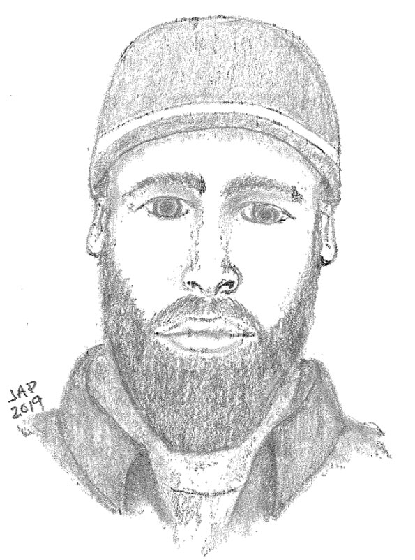 Attempted Child Luring and Disorderly Conduct suspect Arlington Heights