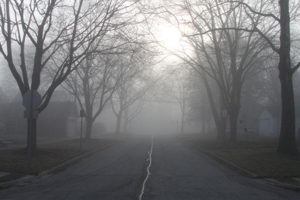 Fog Rec Park neighborhood