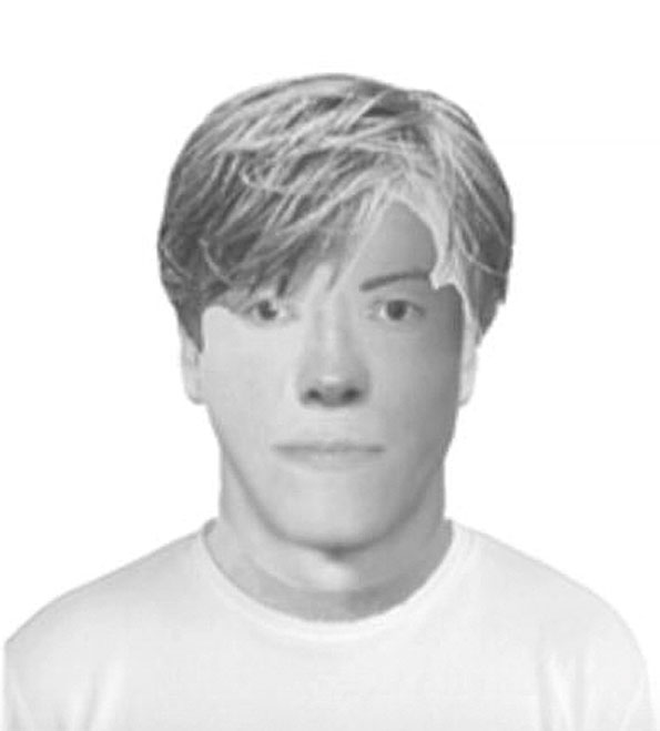 Facial composite of attempted kidnapping suspect, Naperville