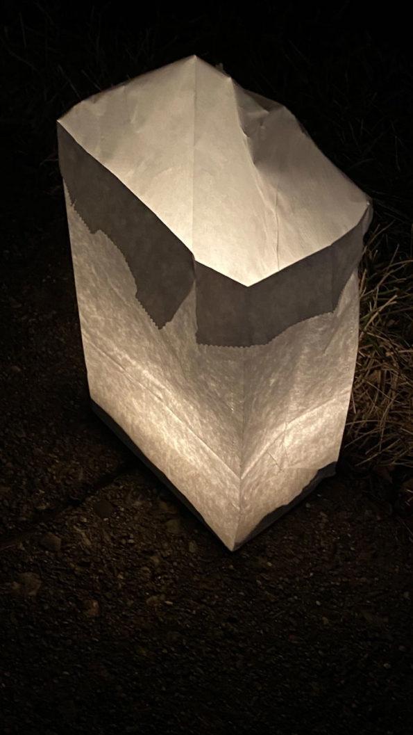 Luminaria Dryden on December 23, 2019