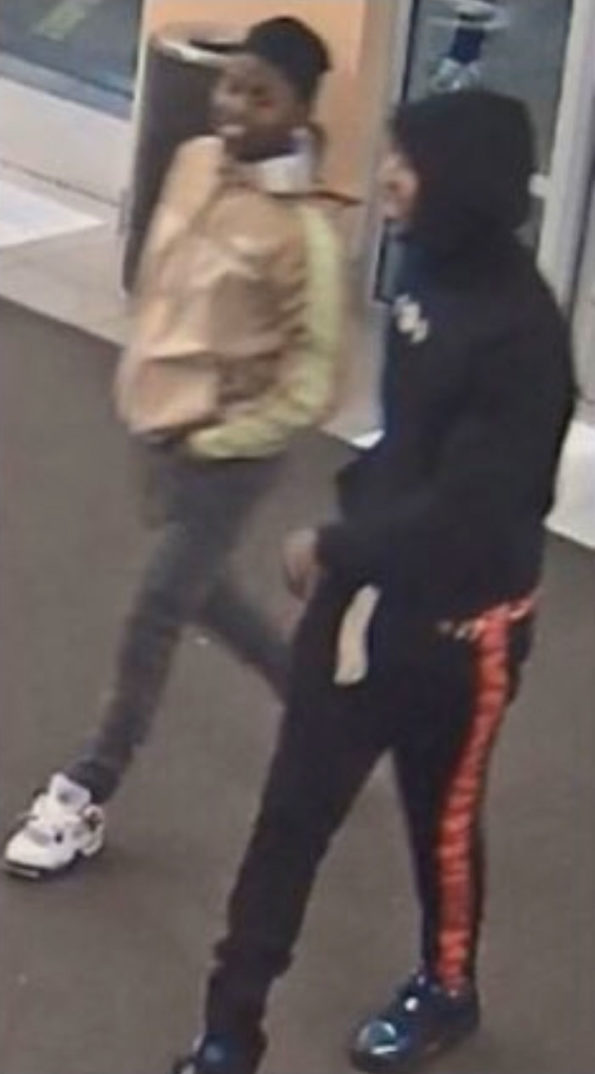 "MonCler retail theft ""flash mob"" robbery suspects at Fashion Outlets of Chicago Mall in Rosemont"