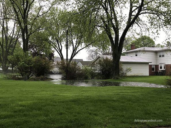 Backyard on Hawthorne Street west of Dryden Avenue Arlington Heights