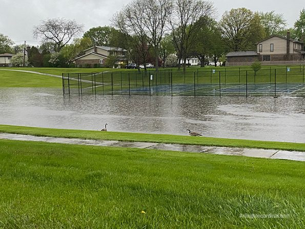 Green Slopes retention pond in Arlington Heights Sunday May 17, 2020
