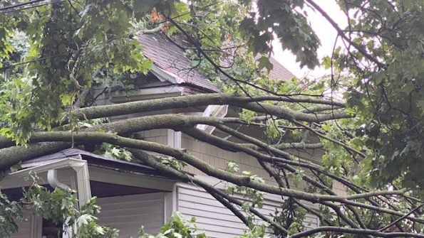 Arlington Heights house damage from downed tree