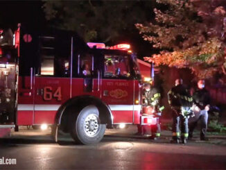 Des Plaines Tree Set on Fire on Walnut Avenue west of Graceland Avenue in Des Plaines