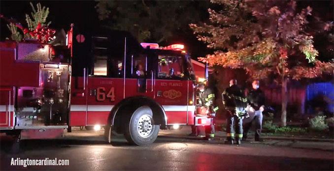 Des Plaines Tree Set on Fire on Walnut Avenue west of Graceland Avenue in Des Plaines