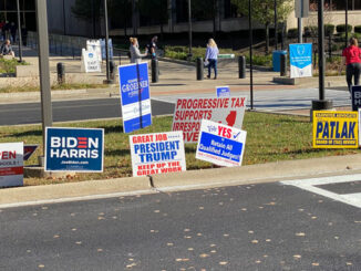 Campaign signs at Cook County Circuit Court in Rolling Meadows