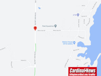 Crash map at Wonder Lake Road and White Oak Road in Wonder Lake on Friday, November 6, 2020 (Map data ©2020 Google)