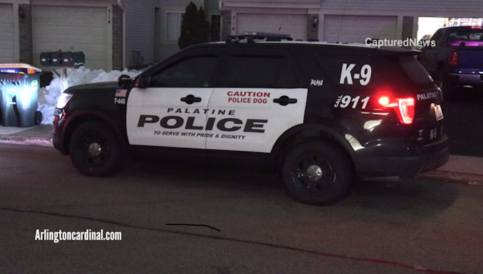 Palatine police K-9 SUV at the driveway at the front of the townhouse where a man was reported stabbed