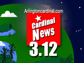 March 12 0312 Arlington Cardinal Thumbnail
