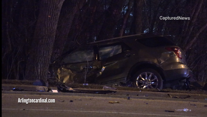 One vehicle in the trees in the forest preserve near Alexian Brothers Medical Center at Biesterfield Road and Beisner Road in Elk Grove Village
