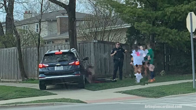 Vehicle crash with a tree at Dwyer Avenue and Kirchhoff Road in Arlington Heights Tuesday, April 6, 2021 about a minute after police and paramedics were dispatched