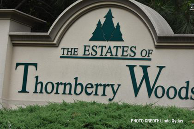 The Estates of Thornberry Woods near the border of Naperville and Woodridge