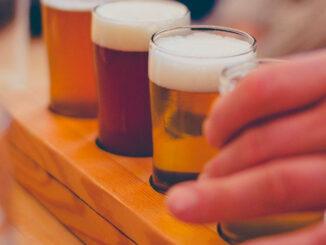 Beer variety (SOURCE: Veeka Skaya/Pixabay)