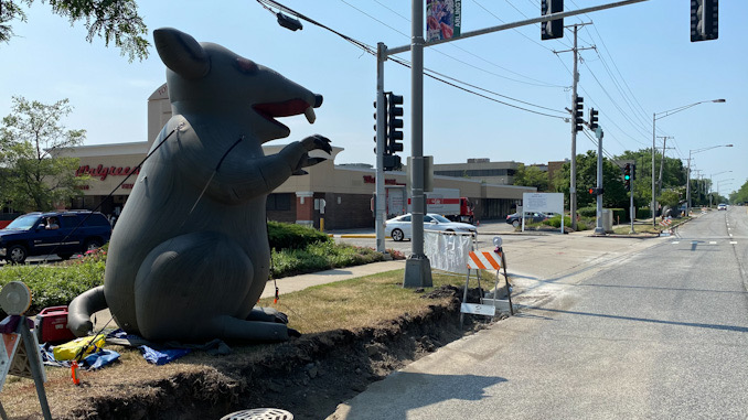 Inflatable rat at the entrance to Town & Country Shopping Center at Arlington Heights and Lillian Avenue in Arlington Heights