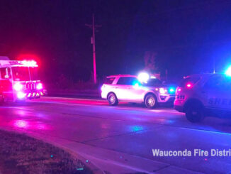 Pedestrian hit on Route 120 in Wauconda Township on Saturday, June 19, 2021 (SOURCE: Wauconda Fire District)