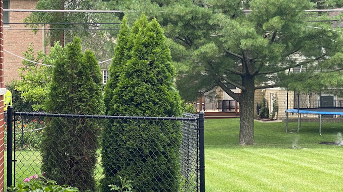 Downed power lines near, but not across a chain link fence on Walnut Avenue in Arlington Heights