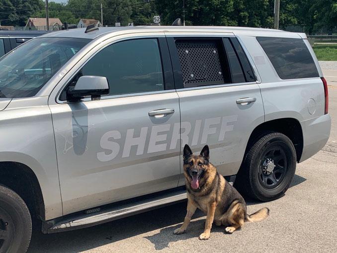 Lake County Sheriff's K-9 Duke (SOURCE: Lake County Sheriff's Office)
