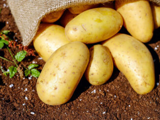 Potatoes with burlap (Image by Couleur from Pixabay)