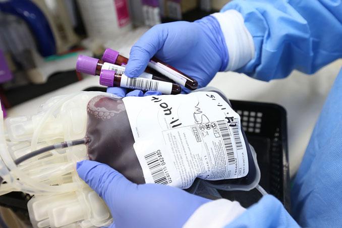 "Blood transfusion (PHOTO SOURCE: <a href=""https://pixabay.com/users/ahmadardity-3112014/?utm_source=link-attribution&utm_medium=referral&utm_campaign=image&utm_content=5053760"">Ahmad Ardity</a> from <a href=""https://pixabay.com/?utm_source=link-attribution&utm_medium=referral&utm_campaign=image&utm_content=5053760"">Pixabay</a>)"