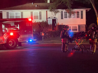 Paramedics stand by immediately after firefighters extinguished a fire at a house on Highland Grove Lane in Palatine