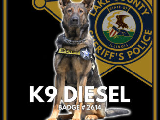 Lake County Sheriffs Office K-9 Diesel (SOURCE: Lake County Sheriff's Office)