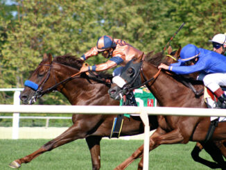 Horse racing August 14, 2004 at the Arlington Million