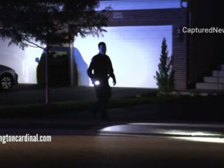 Shooting investigation at Randville Driveand Winslowe Drive in Palatine